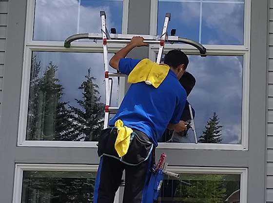 Squeegee cleaning a window